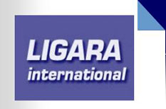 LIGARA International - Business & Manufacturing Solutions Development, Developpement et Optimisation des Systemes et Organisations de Production